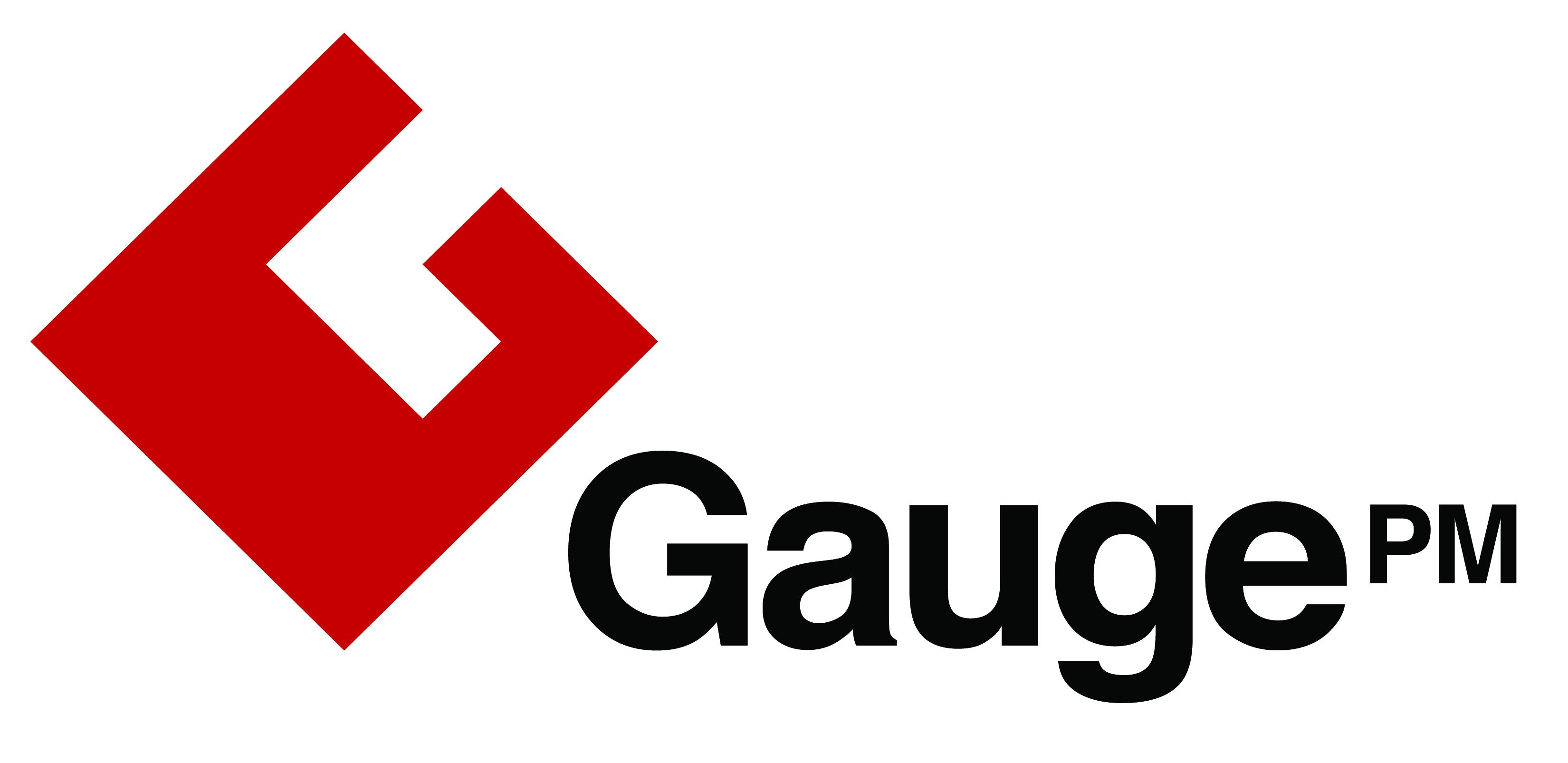 Gauge PM